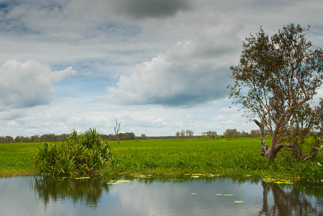 Parque Nacional Kakadu. Territorio del Norte, Australia.