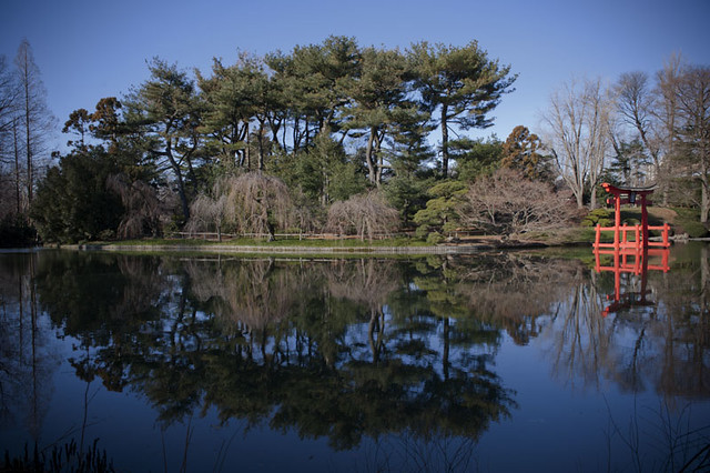 The Japanese Hill-and-Pond Garden, Brooklyn Botanic Garden