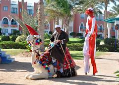 Sharm El Sheikh - Xmas 2012