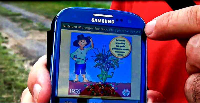 IRRI News: Young global leaders to promote apps for rice farmers