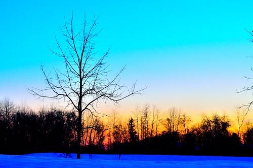 trees ohio sky snow color sunrise nikon beavercreek boost explored 3365 nikond5100 kkfrombb jan2013 365moments2013 03jan2013