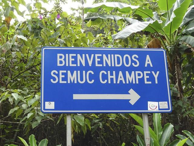 Sumac Champey 48