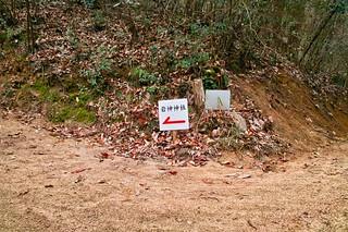 ゆるぎ岩 #4