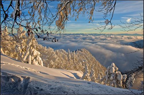 winter snow mountains alps alpes liberty schweiz switzerland nc nikon bravo europa europe flickr suisse suiza swiss feel ne jura neige alpen helvetia nikkor 1001nights svizzera neuchatel montblanc neuchâtel lepetitprince ch berna dieschweiz musictomyeyes 瑞士 suïssa neuenburg suizo chauxdefonds romandie suisseromande 스위스 lachauxdefonds myswitzerland lasuisse سويسرا שווייץ cantondeneuchâtel d700 阿尔卑斯山 nikond700 nikkor2470f28 nikkor2470 izakigur cantondeneuchatel nikon2470f28 nikon2470mmf28g cantonofneuchatel 명사 suisia laventuresuisse izakigurneuchatel 1001nightsmagiccity mygearandme paysdeneuchâtel izakiguralps izakigurneuchâtel izakigurjura ӯҳҳоиалп izakigur2012 izakigurd700 lesrochersdetablettes