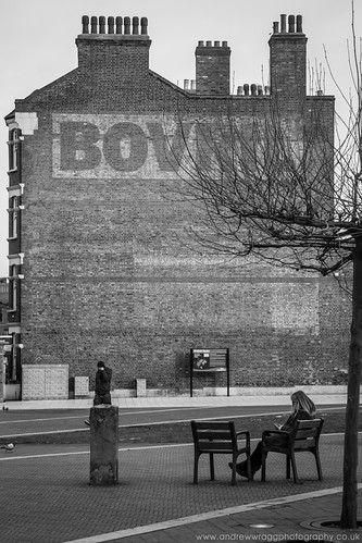 Day 26 of 365 - Bovril and bench by Andrew Wragg