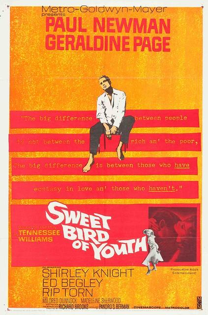 Copy of SweetBirdOfYouth1962LRG