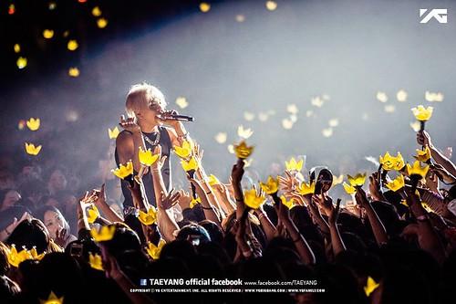 taeyang-yg-facebook004