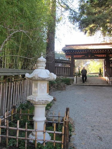 Hakone Japanese Gardens, Saratoga, CA IMG_2291