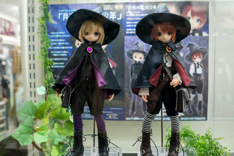AZONE_LS_Akihabara_20130105-DSC_9876