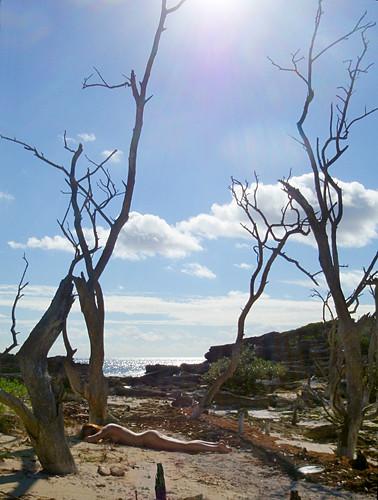 trees art nature topf25 female nude bay photo outdoor jonathan charles bermuda hungry jonathancharles chercherlafemme