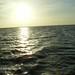 Munnar-Thekady