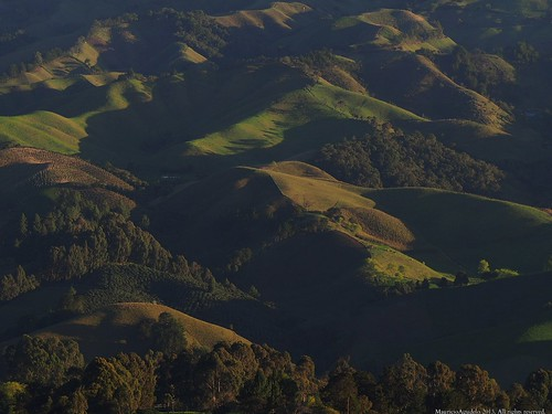 sunset atardecer campo sombras fincas potreros