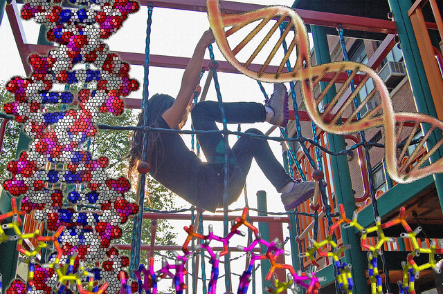 Chromosomal Playground