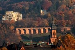 Heidelberg by Fall