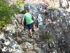 Mt Tibrogargan 004