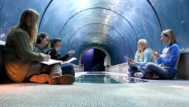 Tank Tunnel 01