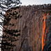 Yosemite National Park: Firefall 2013 by Tom.Bricker
