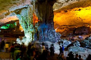 Cave Life.