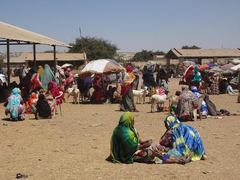 Mercado de animais, Hargeisa Somalilândia