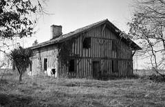 Maison landaise à l'abandon