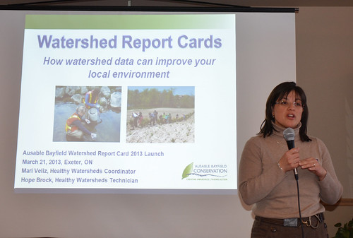 Mari_Veliz_Watershed_Report_Card_1