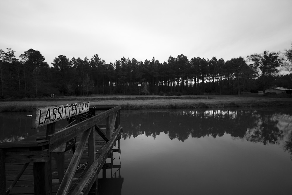 6/365 - Gray Day