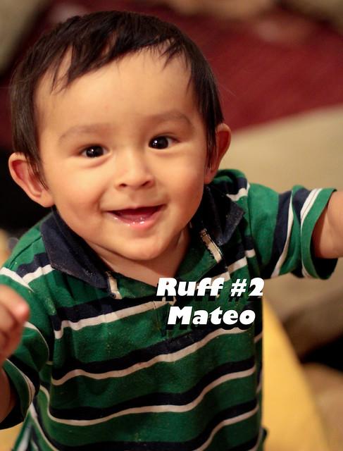 Ruff2_Mateo