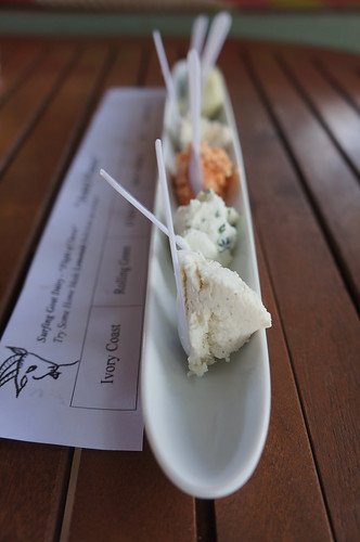 Surfing Goat_Cheese flight