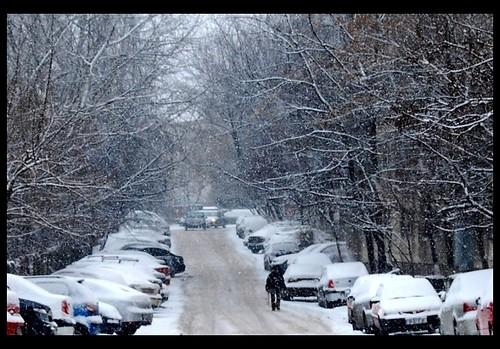 city winter white snow black car snowstorm