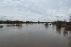 La Moselle - Vue depuis le Pont de la D55