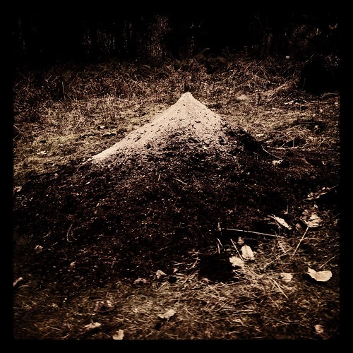 homemadevolcano by Nature Morte
