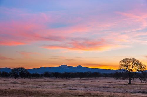 california sunrise landscape unitedstates oaktrees redbluff lassenpeak tehamacounty jellysferryroad