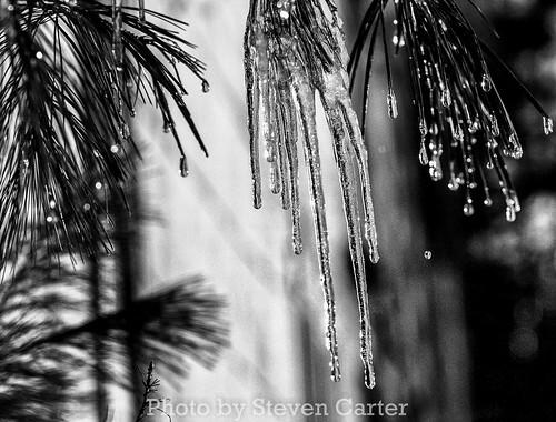 stalactites de glace by satdishguy