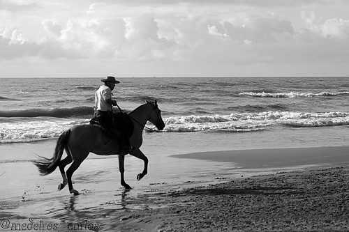 Cavalgada 2013 - Praia da Ancora(Arroio do Sal - RS) 8498543620_85b5790eba