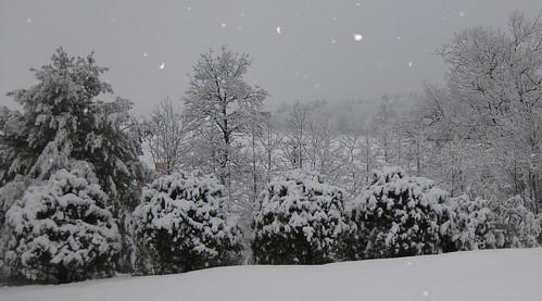 Feb 24 008