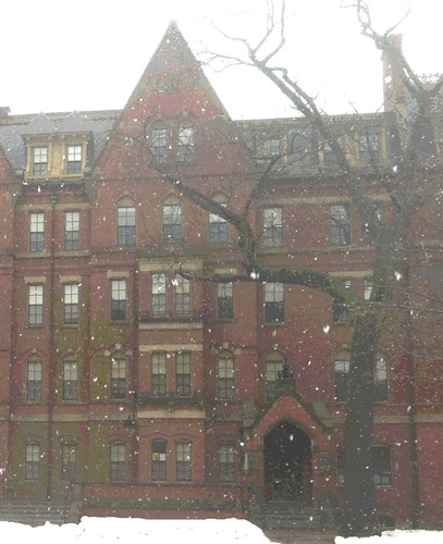 Snow Fall at Harvard (Digitally Modified and Posterized Photo) by randubnick
