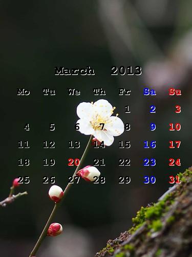 201303_iPhoneWP