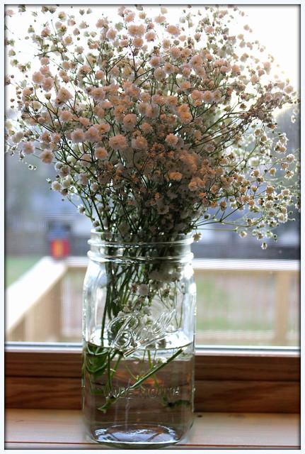 fresh flowers in a mason jar