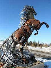 Whitehorse - Winter Travels