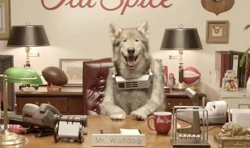 Wolfdog-642-380