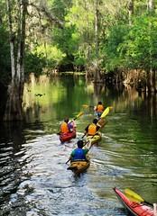 I Love a Canoe