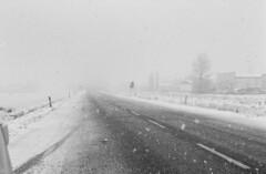 fog(1.0), winter(1.0), road(1.0), snow(1.0), rain and snow mixed(1.0), monochrome photography(1.0), lane(1.0), monochrome(1.0), winter storm(1.0), blizzard(1.0), black-and-white(1.0), freezing(1.0),