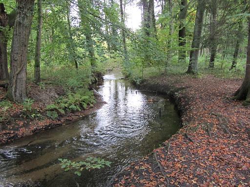 Bielefelder Herbstimpressionen
