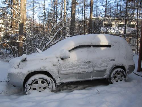 雪にまみれて・・・2012.1.15 by Poran111