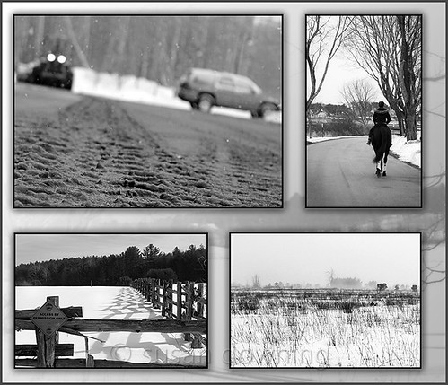 Snowy Days Collage BW