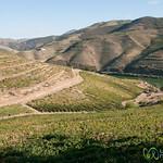 Quinta Nova de Nossa Senhora do Carmo - Douro Valley, Portugal