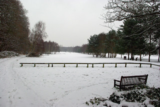 D7882.  Southwood Golf Course.
