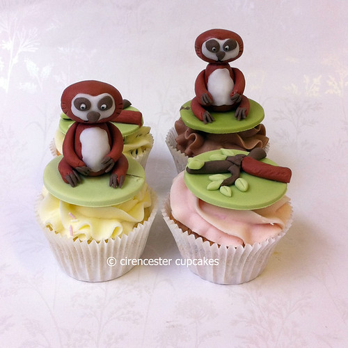 Cupcakes - 3 Toed Sloth by Cirencester Cupcakes