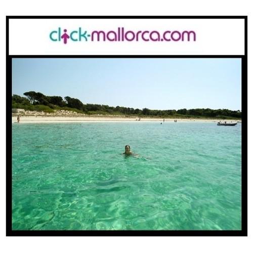Catamaran excursion Mallorca 2013