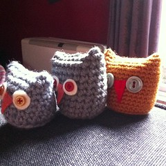 New owlets